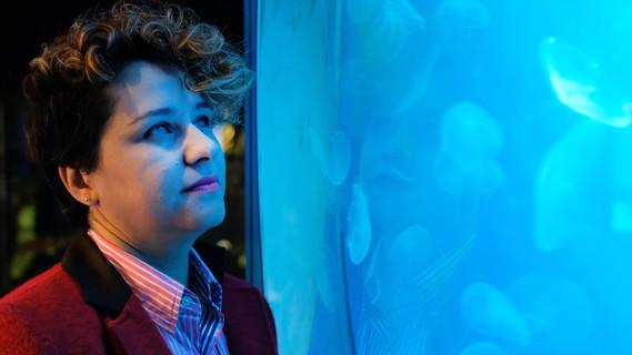 Frau Jamileh Javidpour schaut in ein Aquarium mit Ohrenquallen.