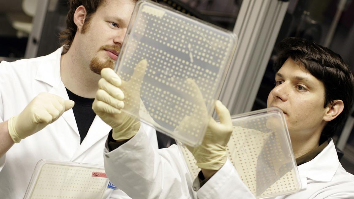 Forscher mit Elektrophorese-Gel