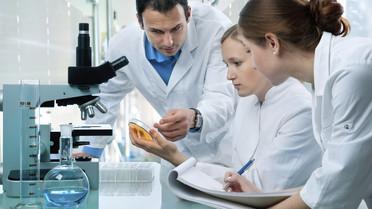 Wissenschaftlerinnen und Wissenschaftler mit einer Petrischale vor einem Mikroskop