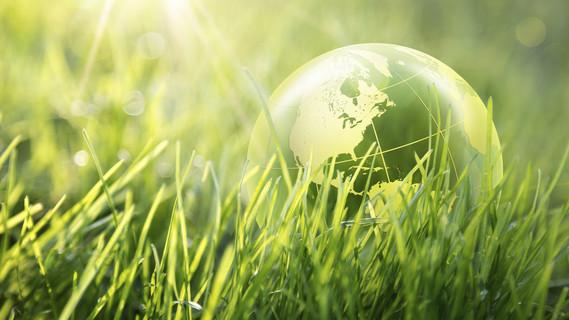 Ein Modell der Erde liegt auf einer Wiese.