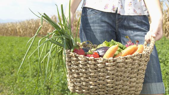 Eine junge Frau hält einen Korb mit Obst und Gemüse