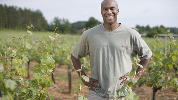 Mann im Weinberg