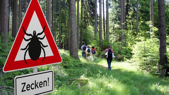 Ein Schild warnt die Wanderer vor Zecken in diesem Gebiet