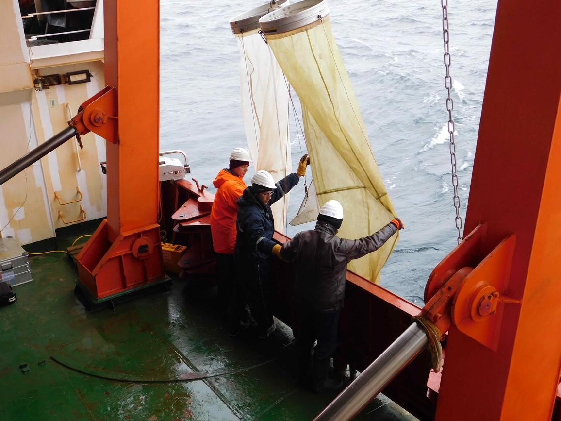 Das Bongo-Netz im Einsatz. Die Biologen vom Institut für Arktis- und Antarktisforschung in St. Petersburg untersuchen Kleinstlebewesen in der Wassersäule, um Änderungen des Ökosystems zu erfassen.