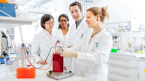 vier junge Wissenschaftler im Labor