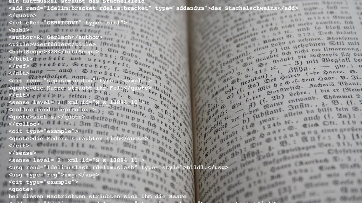 Lexikographie_Buch