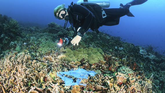 Taucher sucht auf dem Meeresgrund nach Müll