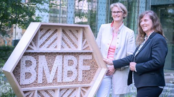 Im BMBF am Standort Berlin wurden Bienenhotels aufgestellt.