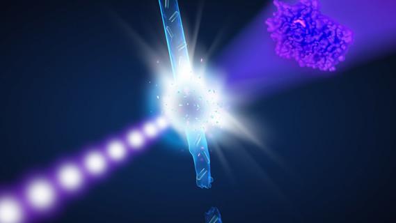 Künstlerische Darstellung des Experiments: Treffen die intensiven Röntgenlaserblitze (lila) auf die Proteinkristalle in dem schnellen Wasserstrahl, lässt sich aus diesen Aufnahmen die Struktur der Proteine in dem Kristall erkunden (rechts).