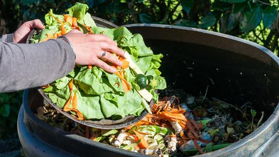 Über 11 Millionen Tonnen Lebensmittel landen in Deutschland jedes Jahr im Müll.