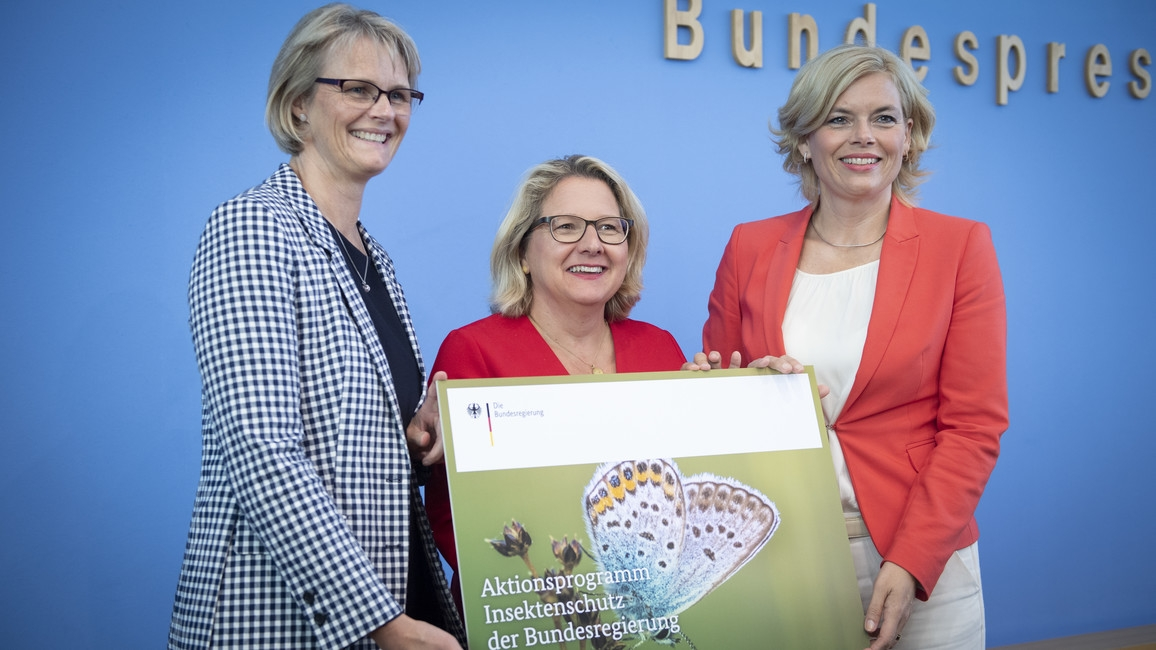 Poster zum Video Aktionsprogramm Insektenschutz