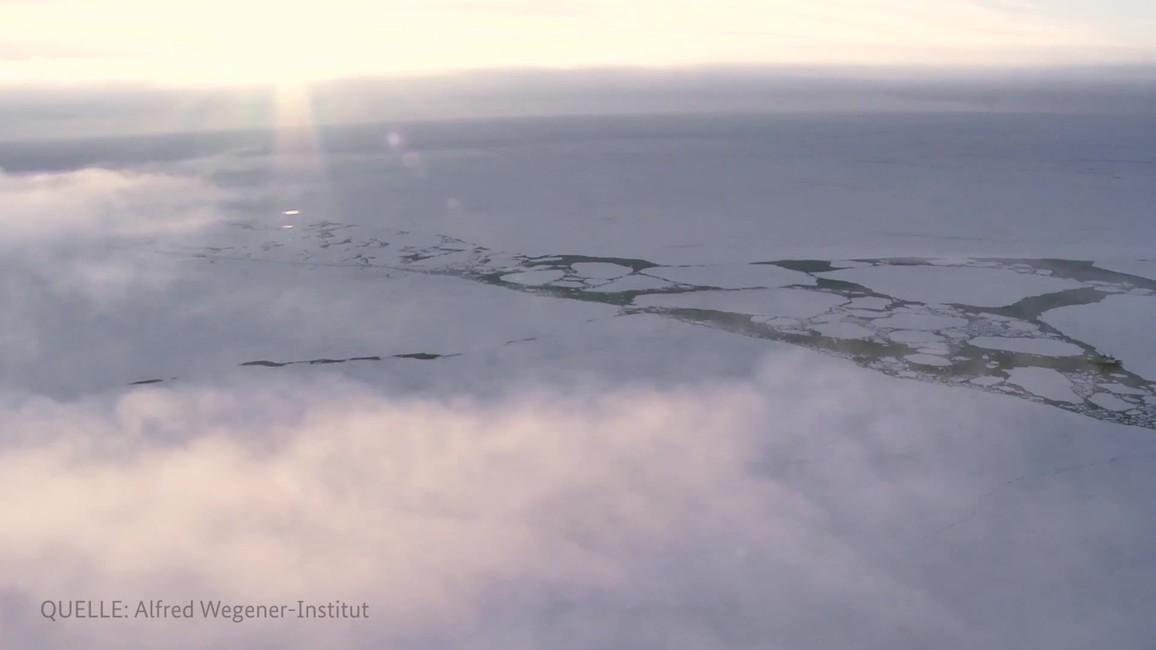 Poster zum Video MOSAiC - Die größte Arktis-Expedition aller Zeiten