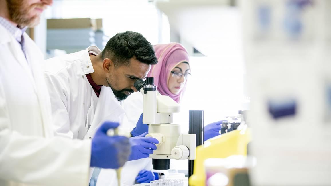 Multikulturelle Gruppe von Wissenschaftlern führen Tests im Labor durch
