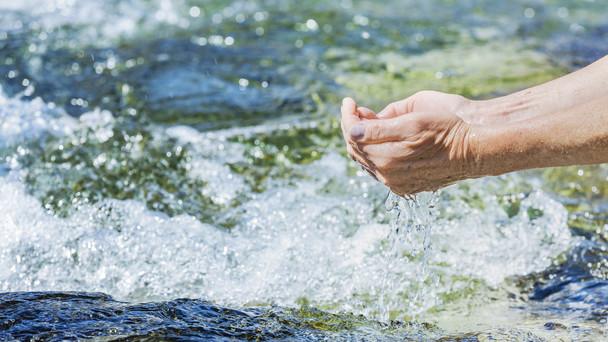 Frisches Trinkwasser aus dem Quellbach