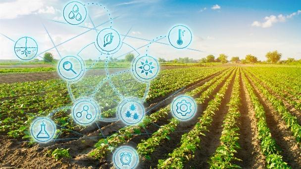 Digitalisierung und Nachhaltigkeit