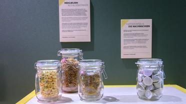 Würden Sie Mehlwürmer essen? Es würde sich lohnen:Sie übertreffen als Proteinquelle sogar Nüsse, Hülsenfrüchte und Getreide.