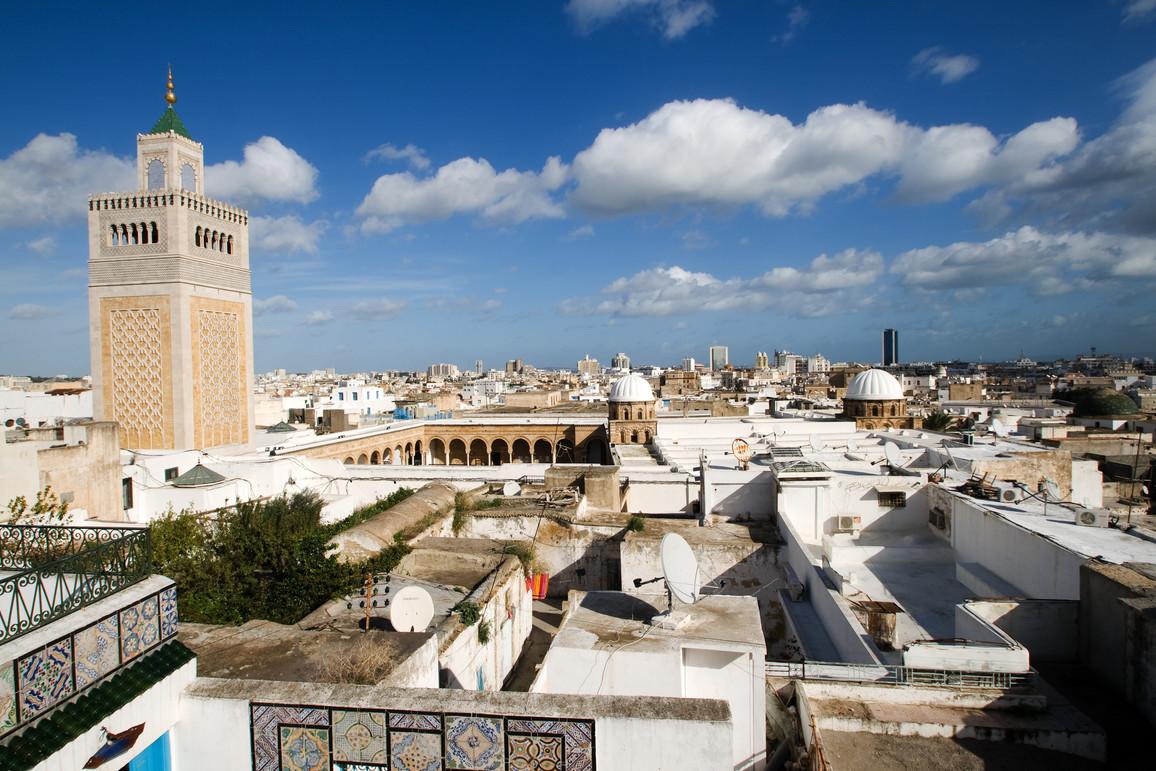Blick über Tunis