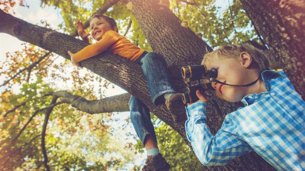 Kinder auf einem Baum im Herbst