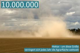 10.000.000 Hektar - um diese Größe verringert sich jedes Jahr die Agrarfläche weltweit