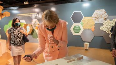 Wie Lockstoffe von Insekten genutzt werden können, um Felder und Wälder umweltfreundlich vor Schädlingen zu schützen, erläutert Geord Pohnert vom DFG-Sonderforschungsbereich ChemBioSys in Jena.