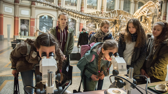 Girl's Day im Naturkundemuseum