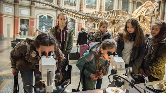 Girl's Day im Naturkundemuseum