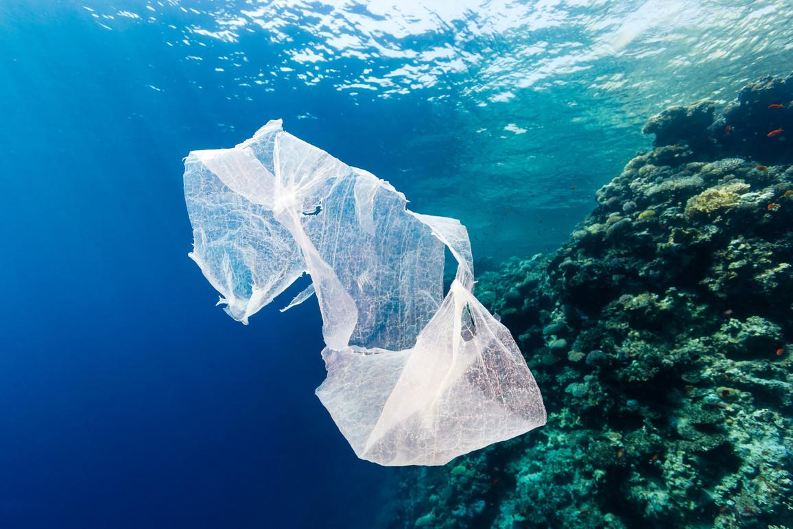 Abgeworfene Plastiktüte im Korallenriff