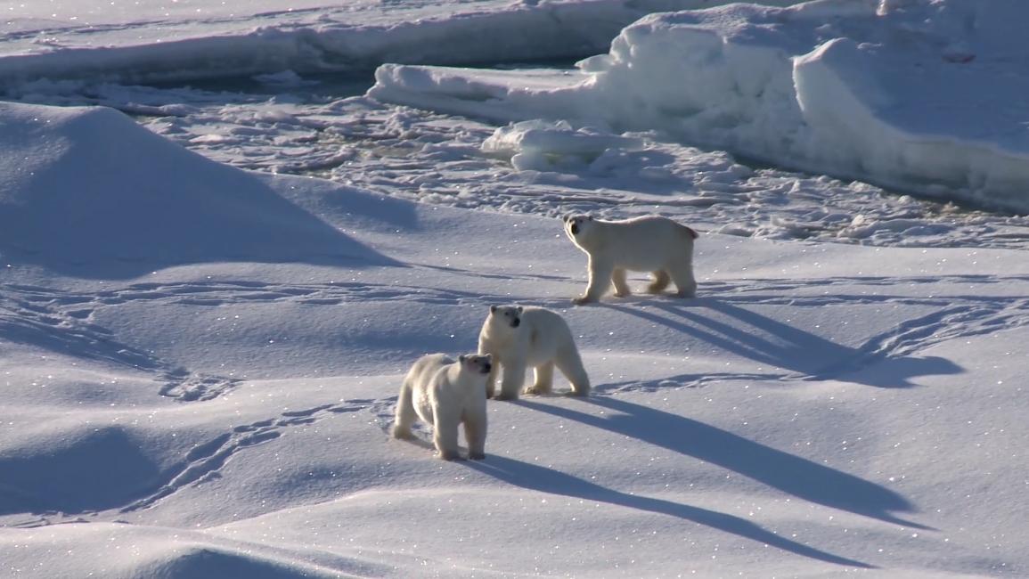 Poster zum Video Für das Klima unterwegs