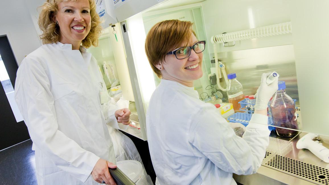 Eröffnung des Niedersächsischen Zentrums für Biomedizintechnik, Implantatforschung und Entwicklung