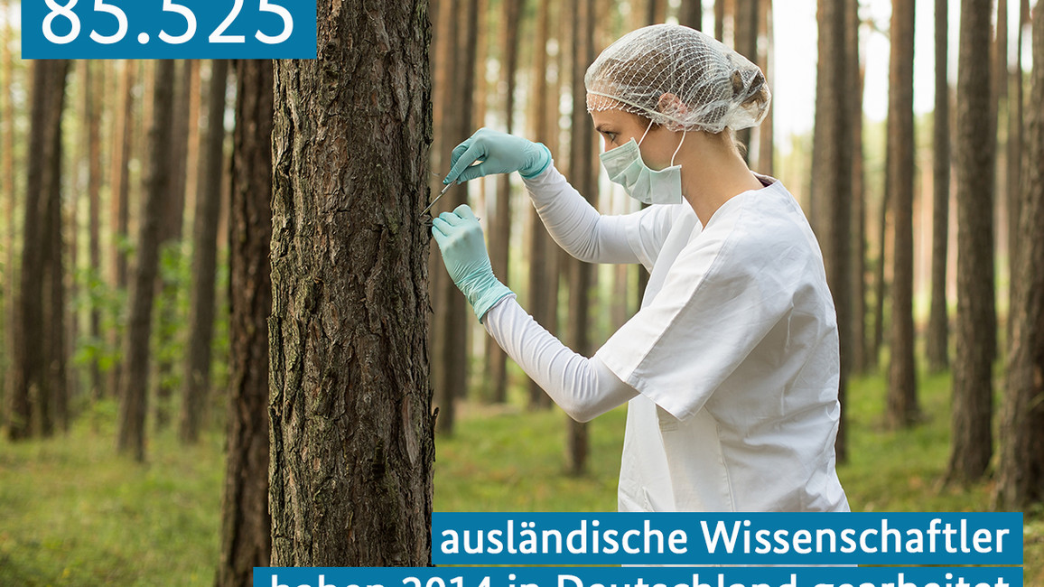 85.525 ausländische Wissenschaftler haben 2014 in Deutschland gearbeitet
