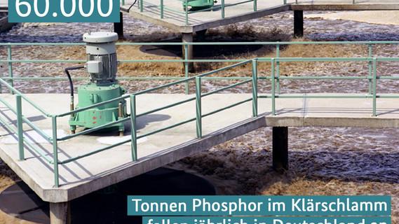 60.000 Tonnen Phosphor im Klärschlamm fallen jährlich in Deutschland an