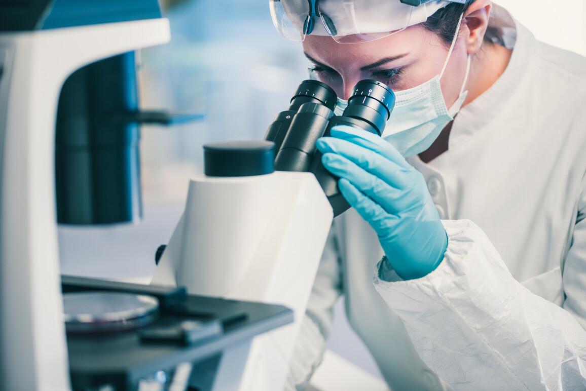 Techniker der Mikrobiologie bei der Arbeit mit Bakterienstämmen