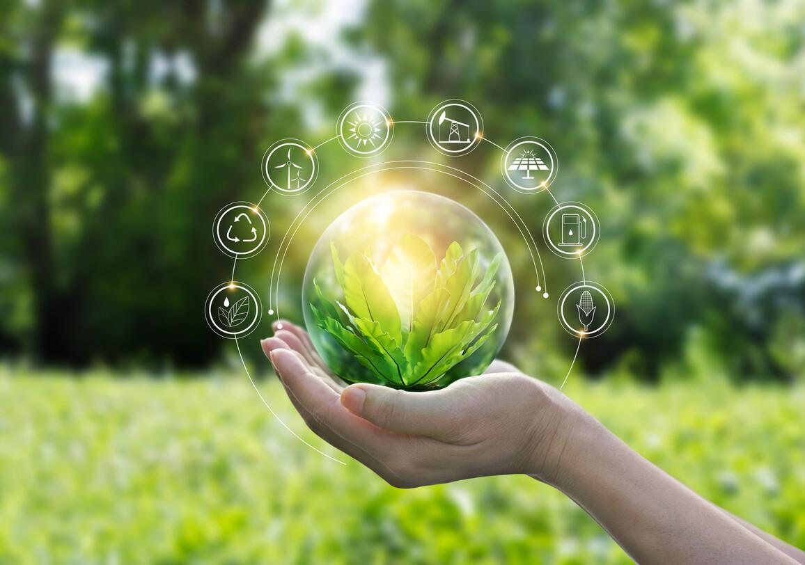 Hände schützen die Kugel des grünen Baumes aus tropischer Natur