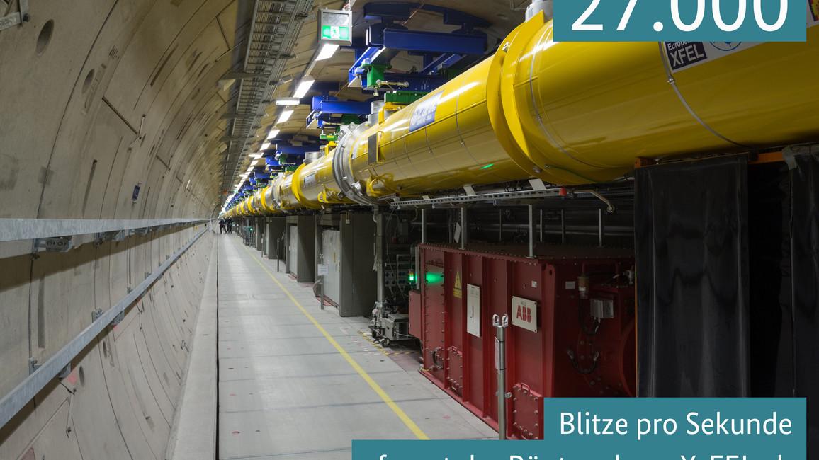27.000 Blitze pro Sekunde feuert der Röntgenlaser X-FEL ab