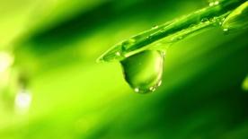 Poster zum Video Förderschwerpunkt Nachhaltiges Wassermanagement