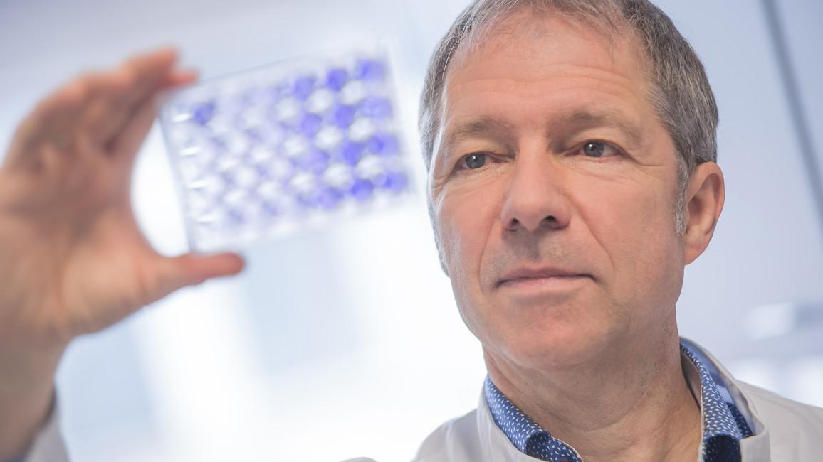 Auszeichnung für bahnbrechende Forschung zu Hepatitis C: Der Virologe Ralf Bartenschlager erhält den renommierten Lasker~DeBakey-Preis.