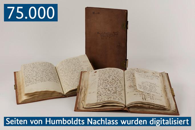 Alexander von Humboldt – Amerikanische Reisetagebücher neun in Leder gebundene Bände