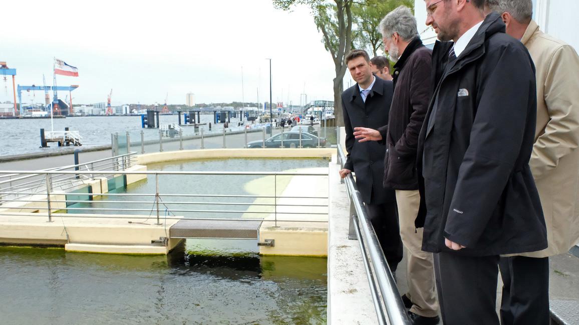 In Kiel besucht Stefan Müller auch das Aquarium GEOMAR mit Seehundsbecken direkt an der Kiellinie.