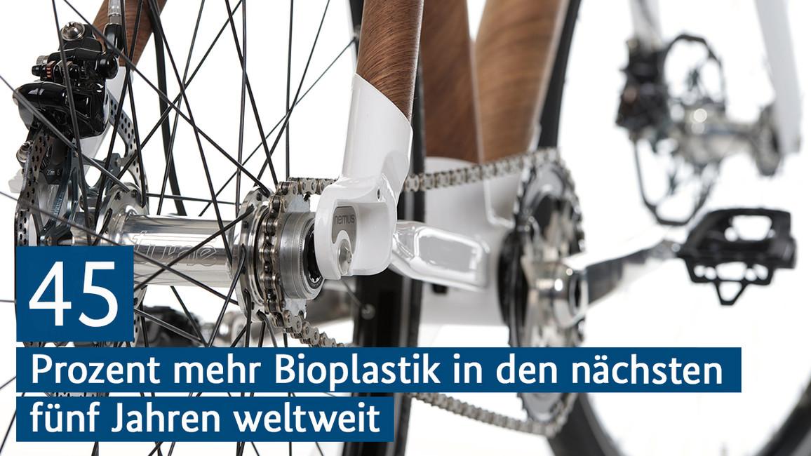Fahrradrahmen aus LignoTUBEs – leichten Rohren aus Holz.