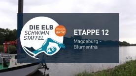 Poster zum Video Elbschwimmstaffel