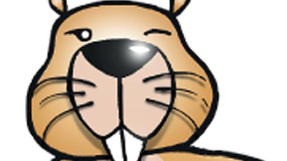 Logo Informatik-Biber