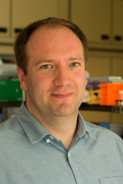 Prof. Dr. Lars Redecke