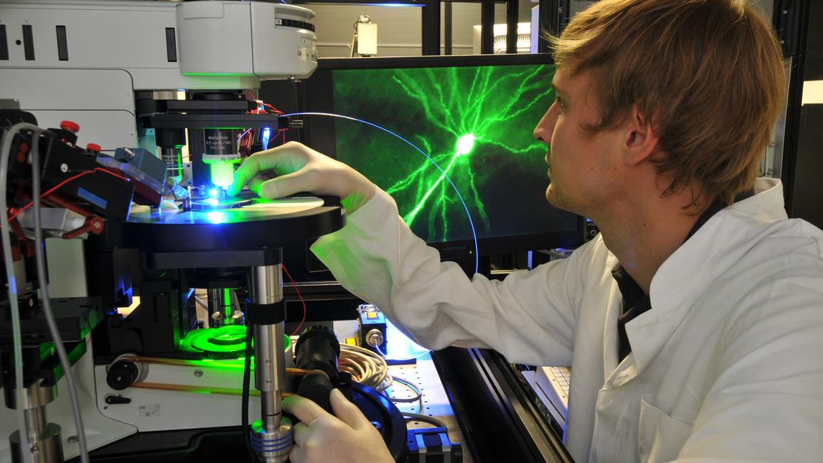 Mikroskop wird für Messung vorbereitet – Forscher des DZNE untersuchen an Nervenzellen und Modellsystemen, wie das Gehirn arbeitet und was bei einer Erkrankung geschieht.