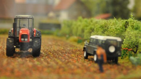 Modell, wie Agroforstwirtschaft funktioniert
