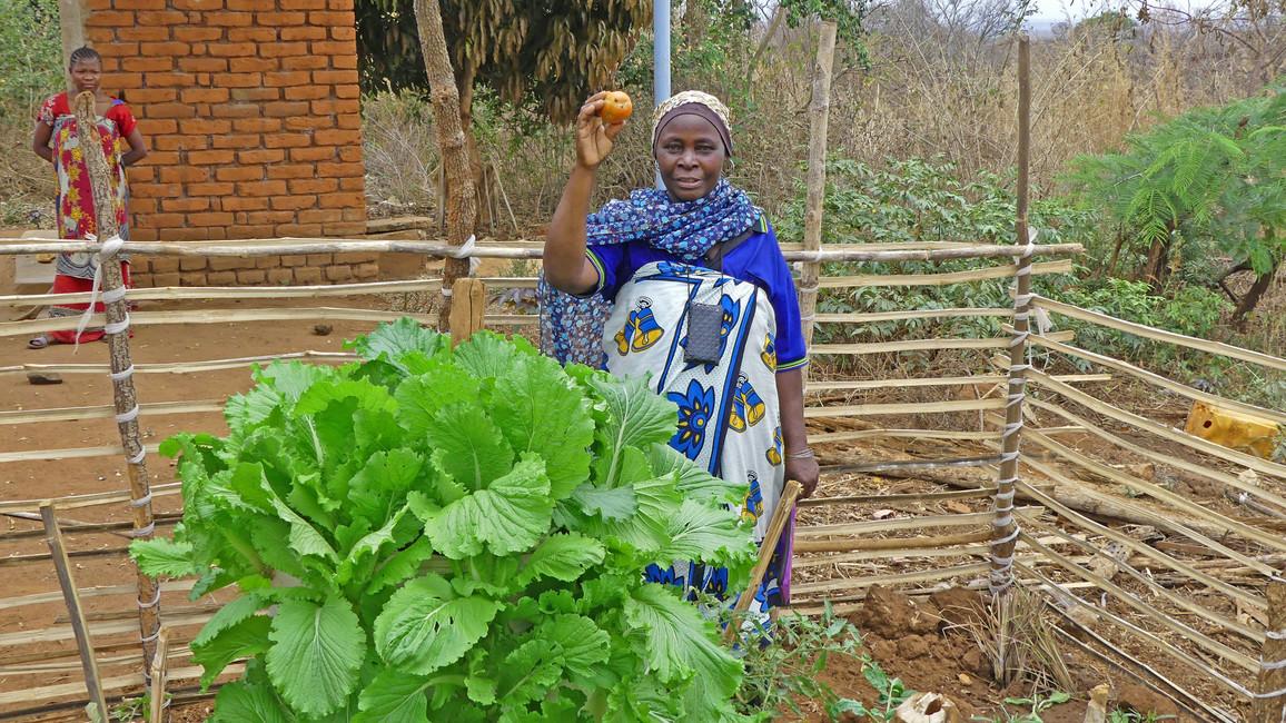 GlobE – Forschung für die globale Ernährungssicherung